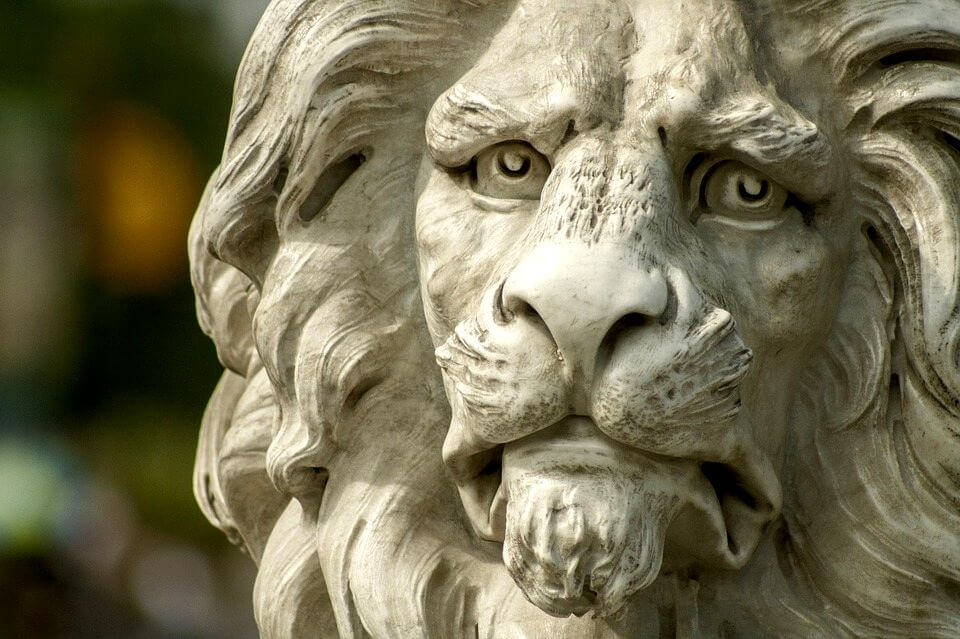 強固ライオン